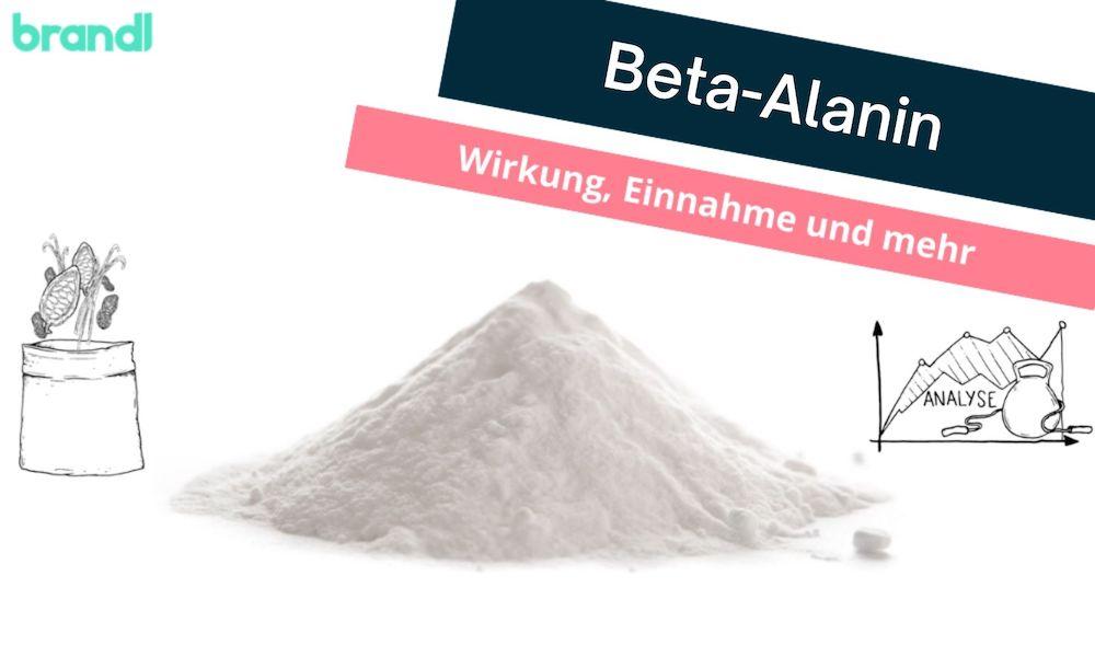 Beta-Alanin– Was ist bei der Beta-Alanin Einnahme und Wirkung zu beachten?