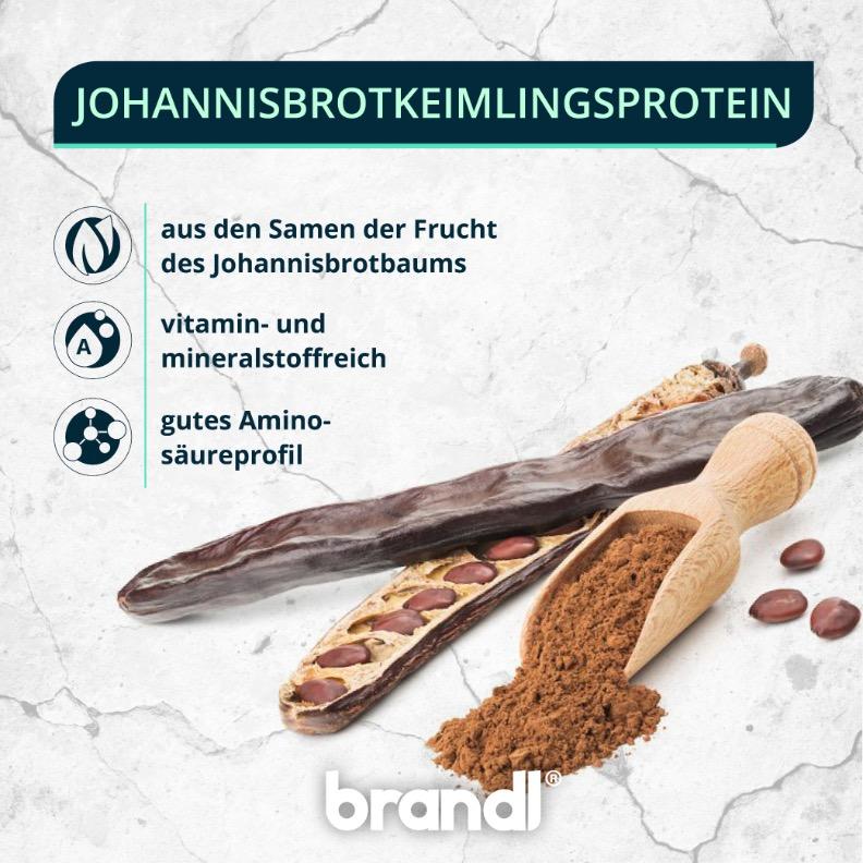 Johannisbrotkeimlingsprotein - Ein wahrer Geheimtipp