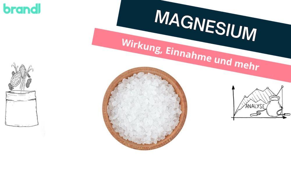 Magnesium – Was ist bei der Magnesium Einnahme und Wirkung zu beachten?
