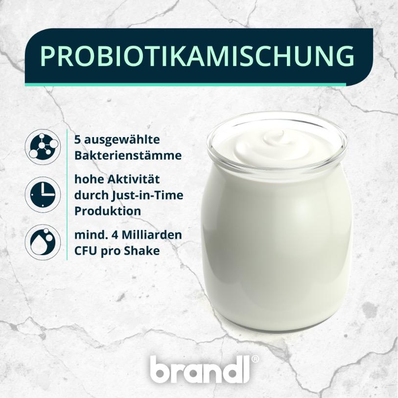 Probiotika - die aktuelle Studienlage